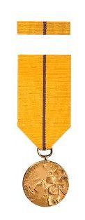 img-medaile-za-zasluhy-1340007.jpg