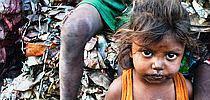india_chudoba_210.jpg