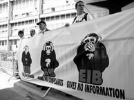 8_EIB-1-m.jpg