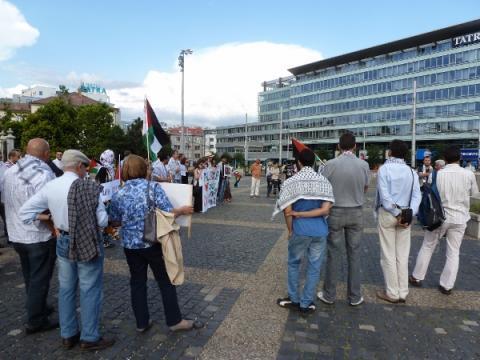 palestina_protest_6.jpg