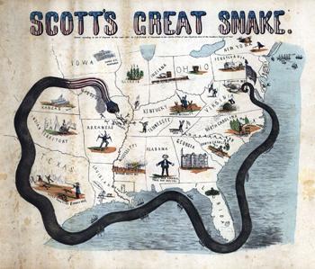 scotts_grate_snake_350px.jpg